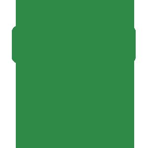 Icona mobilità