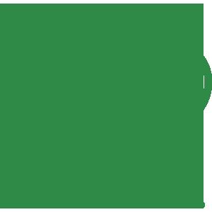 Icona verde